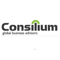 Consilium Global Business Advisors (Short-term) image