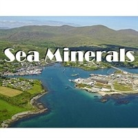 Selling Sea minerals - Algae product - calcium magnesium nutrition image