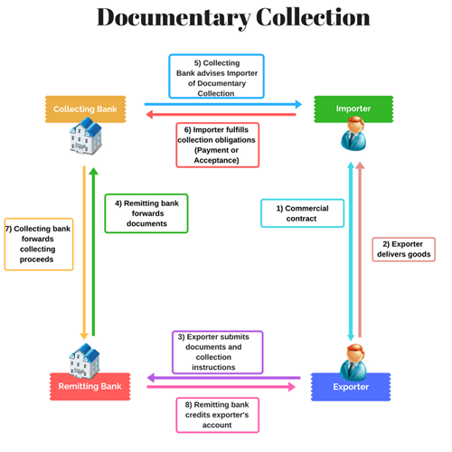 documentary-collection.png