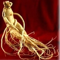 Korea Red Ginseng (Pure) Extract image